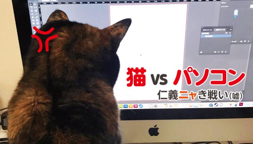 サビ猫 パソコン