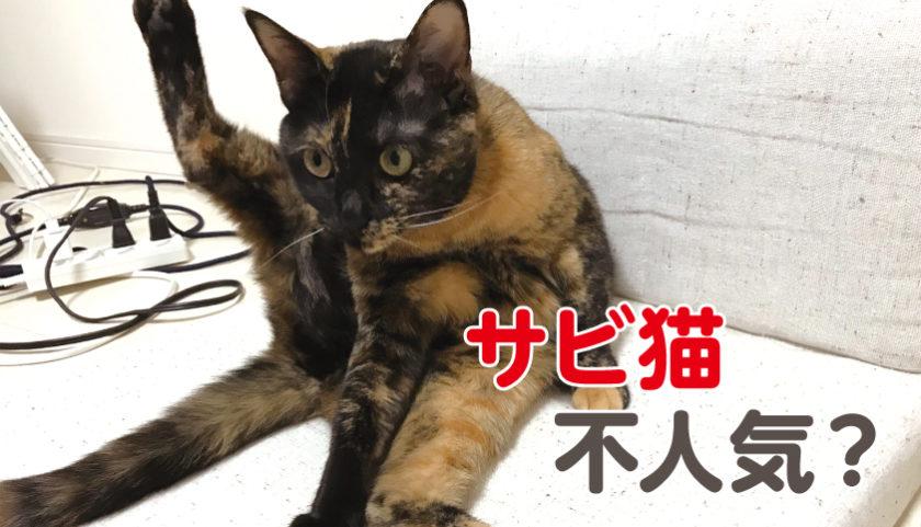 サビ猫 不人気