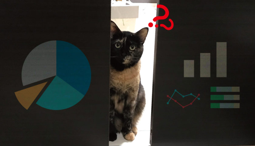 サビ猫 不人気 調査