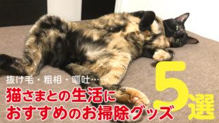 猫 生活 抜け毛 おすすめ 掃除 グッズ