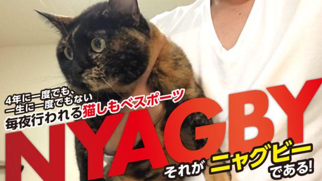 猫 ニャグビー